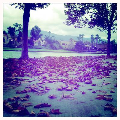 Lake_hipsta