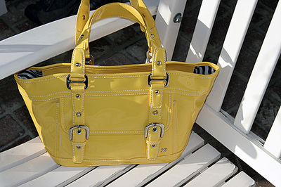 Yellow_purse